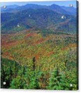 Mount Chocorua Foliage Acrylic Print