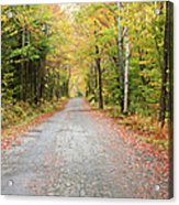 Mount Clinton Road - Beans Grant New Hampshire Acrylic Print