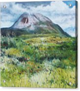 Mount Errigal County Donegal Ireland 2016 Acrylic Print