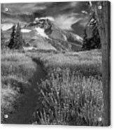 Oregon's Mount Hood Acrylic Print