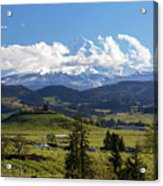 Mount Hood Over Fruit Orchards In Hood River Acrylic Print