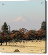 Mount Hood Over The Flats Acrylic Print
