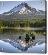Mount Hood Reflection On Trillium Lake Acrylic Print