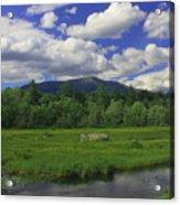 Mount Katahdin Summer Acrylic Print