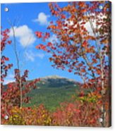 Mount Monadnock Red Maple Foliage Acrylic Print
