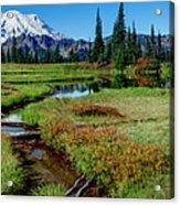 Mount Rainier- Upper Tipsoo Lake Acrylic Print