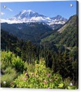 Mount Rainier From Scenic Viewpoint Acrylic Print