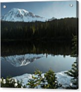 Mount Rainier Reflection Lake W/ Tree Acrylic Print