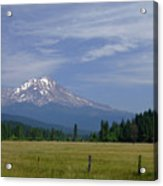 Mount Shasta Acrylic Print