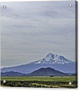 Mount Shasta Majesty Acrylic Print