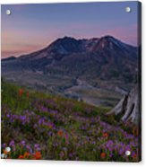 Mount St Helens Spring Colors Acrylic Print