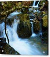 Mount Tam Waterfall Acrylic Print