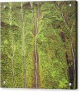 Mount Waialeale Acrylic Print