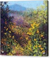 Mountain Beauty Acrylic Print