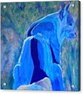 Mountain Bobcat Acrylic Print