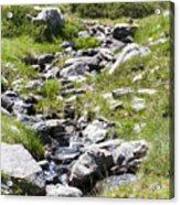 Mountain Creek Acrylic Print
