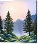 Mountain Firs Acrylic Print