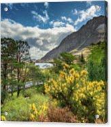Mountain Flora Acrylic Print