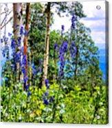 Mountain Meadow Acrylic Print