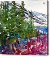 Mountain Meadow Wash Acrylic Print