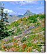 Mountain Of Color Acrylic Print