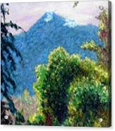 Mountain Rain Forrest Acrylic Print