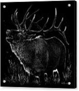 Mountain Reveille Acrylic Print