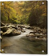 Mountain Stream 2 Acrylic Print