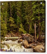 Mountain Stream Acrylic Print by Andrew Soundarajan