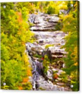 Mountain Stream Acrylic Print