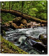 Mountain Stream Iv Acrylic Print
