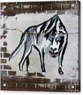 Mountain Tiger Acrylic Print