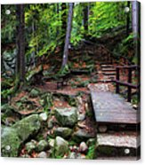 Mountain Trail With Staircase In Autumn Forest Acrylic Print