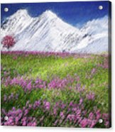 Mountain Valley Acrylic Print
