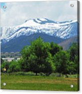Mountain View - Reno Nevada Acrylic Print