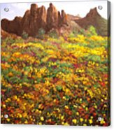 Mountain Wildflowers II Acrylic Print
