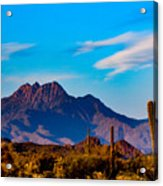 Mountains And Cactus Acrylic Print