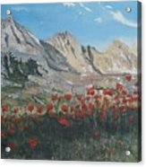 Mountains And Poppies Acrylic Print