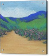Mountains At Moholoholo Acrylic Print