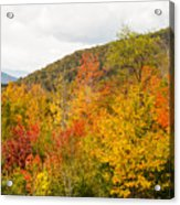 Mountains In The Fall Colors Acrylic Print