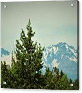 Mountains Of Oregon Acrylic Print