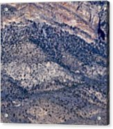 Mountainside Abstract - Red Rock Canyon Acrylic Print