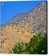 Mountainside From Wealthy Neighborhood Above Santiago-chile Acrylic Print