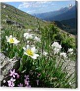 Mountainside Acrylic Print