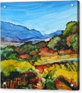 Mountainside Vineyard Acrylic Print