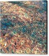 Movement Of Color V Acrylic Print