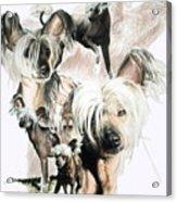 Mowgli Acrylic Print