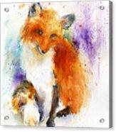 Mr. Fox Acrylic Print