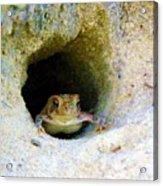 Mr. Toads Sand Castle Acrylic Print