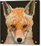 Mrs. Foxy Acrylic Print